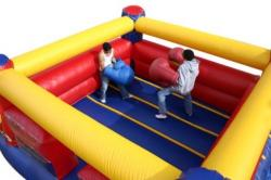 Inflatable bouncy boxing ring cp 005